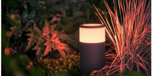 best smart outdoor lights