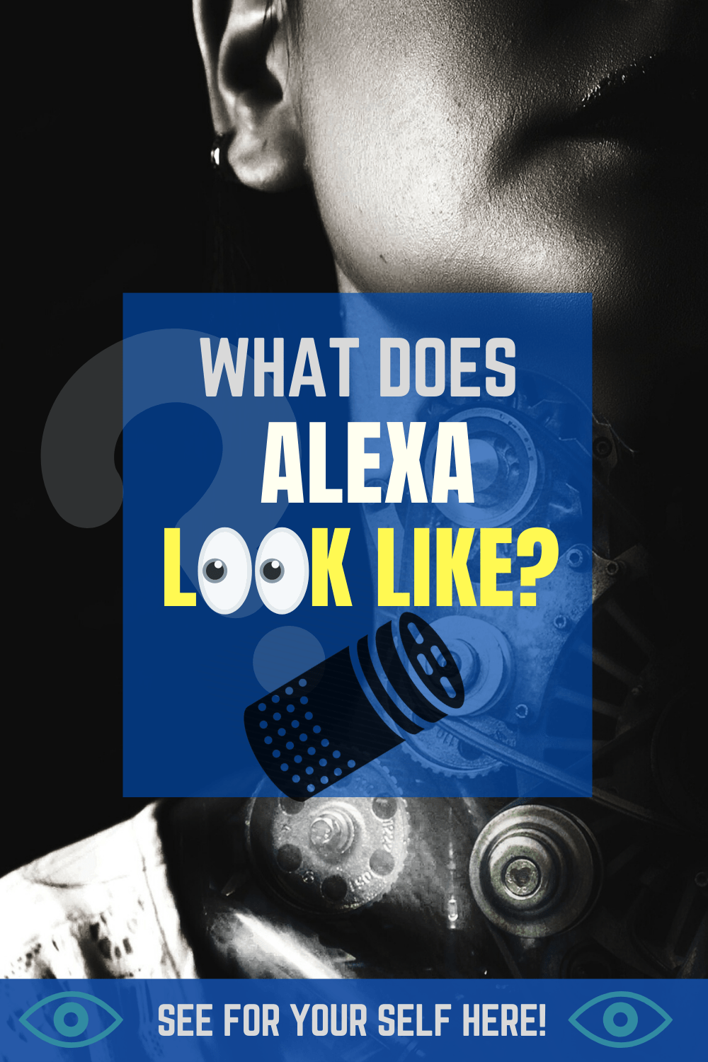 what does alexa look like